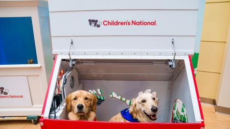 Children's National Hospital Pet Therapy program